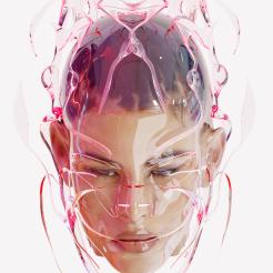 Virtual portrait